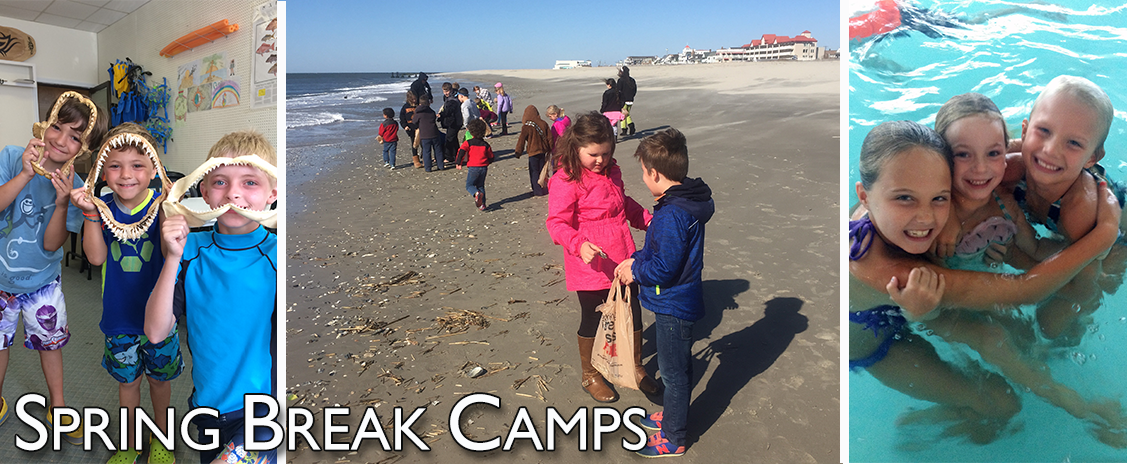 spring-camp-ocean-ecoventures-cape-may